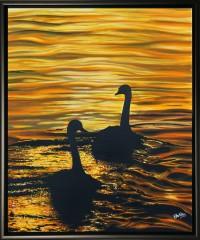 phil-ashley-sunset-swans