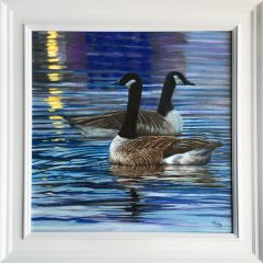 phil-ashley-geese-in-the-evening-light