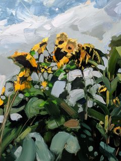 Hester Berry Zebedee's Sunflowers