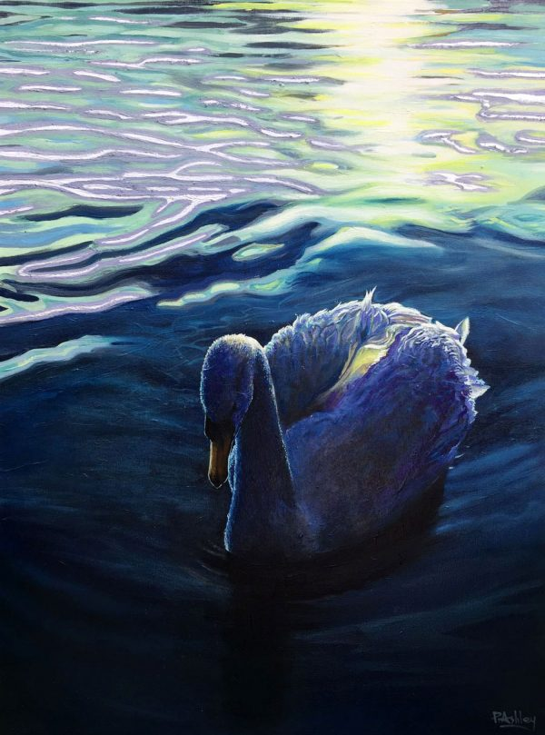CAT No: 26 - PHIL ASHLEY - EVENING SWAN