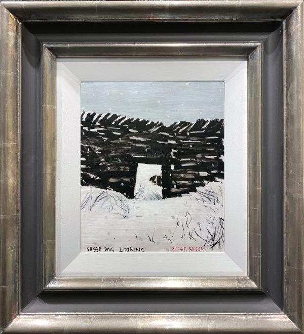 Peter Brook - Sheep Dog Looking
