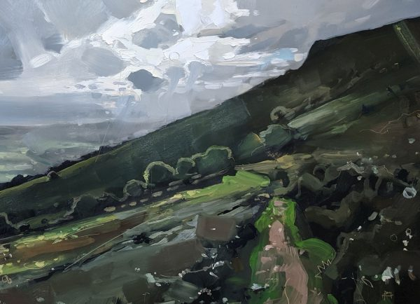 Hester Berry - Brecon Beacons